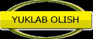 Yuklab-olish tugmasi
