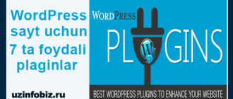 Wordpress plaginlar