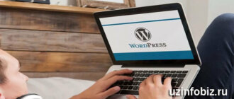 Dasturchi wordpress platformasi