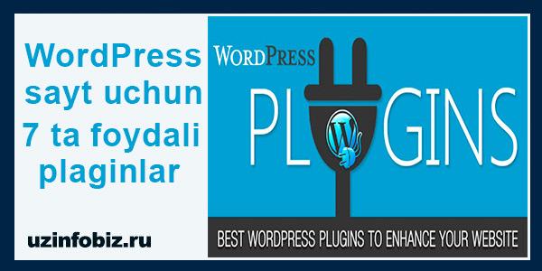 Wordpress plaginlar